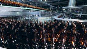 Brouwerijinstallatie met overvloed van glazige bierflessen die zich langs de transportband bewegen stock footage