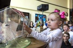 Brovary l'ucraina Centro di spettacolo 25 04 2015 Una bambina sta fissando alla scatola di tornitura con i biglietti di lotteria immagini stock libere da diritti