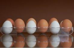 Brovn y huevos blancos fotos de archivo