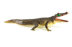 Brow crocodile toy isolated on white background Stock Image
