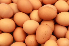 Brow egg in market Royalty Free Stock Images