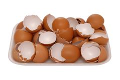 Brown egg shell Royalty Free Stock Images