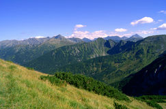 Brow in Tatras mountains Royalty Free Stock Photography