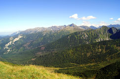 Brow in Tatras mountains Stock Images