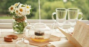 Browarniana wierzbowa herbata zbiory wideo