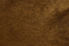 Browl leather Royalty Free Stock Image