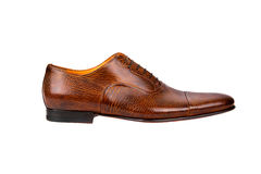 Browm male shoe-1 Royalty Free Stock Photos