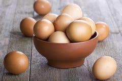 Brown ägg Arkivfoto