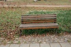 Brown ławka w jesień parku St Petersburg zdjęcia stock