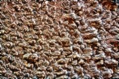 Brown abstract texture for walls and flooring. royalty free stock photo