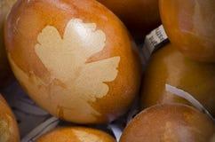 Brown adornó los huevos con el modelo de la hoja Fotografía de archivo libre de regalías