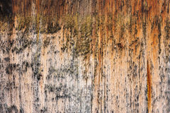 Brown aged wooden board background Stock Images