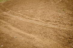 Brown agricultural soil of a field Royalty Free Stock Image