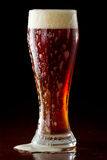 Brown ale Royalty Free Stock Photo