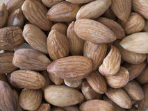 Brown almond. Under natural light Stock Images