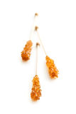 Brown amber sugar crystal on wooden stick. Royalty Free Stock Photo