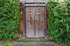 Brown ancient ruined wooden door Stock Image