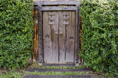 Brown ancient ruined wooden door Stock Photos