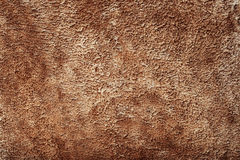 Brown Animal Skin Texture. As Wallpaper or Background Royalty Free Stock Photo