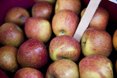 Brown Apples Royalty Free Stock Photography