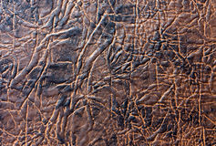 Brown artificial leather texture. Stock Image