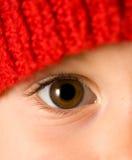Brown-Auge Lizenzfreie Stockfotos