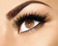 Brown-Augenmake-upnahaufnahme Stockfoto