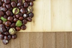 Brown autumn set up with chestnuts. royalty free stock images