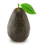 Brown avocado with leaf isolated on a white Stock Photo