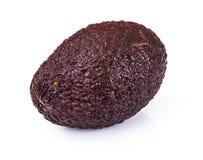 Brown avocado on white background. Studio photo royalty free stock images