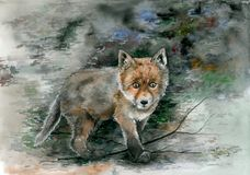 Brown baby fox with dark background. Watercolor illustration royalty free stock photos