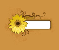 Brown background. With floral design element Royalty Free Stock Image