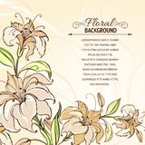 Brown background with blooming lilies. Vector illustration royalty free illustration