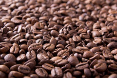 Brown background from coffee grains close up Stock Images
