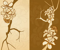 Brown background consisting. Of the branches of trees and flowers stock illustration