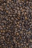 Brown background pattern from coffee grains Royalty Free Stock Image