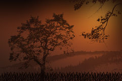 Brown background with silhouette of a tree. Light and dark gradient brown background with silhouette of a tree, branch, grass and mountain behind Stock Photo