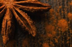 Badian close up. Brown badian close up on dark background royalty free stock photos