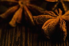 Badian close up. Brown badian close up on dark background royalty free stock image
