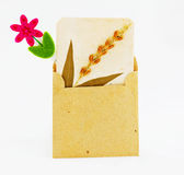 Brown bag with clip Stock Images