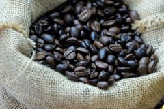 In selective focus of plenty roasted coffee beans stock images