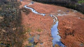 Brown bagna i Mała rzeka, widok z lotu ptaka zbiory wideo