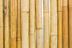 Brown bamboo fence texture Royalty Free Stock Photo