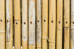 Brown bamboo fence texture Royalty Free Stock Image