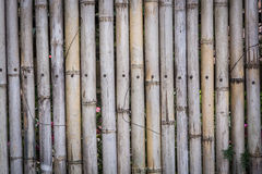 Brown bamboo fence texture Stock Photo