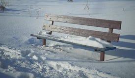 Brown-Bank im Schnee stockfotografie