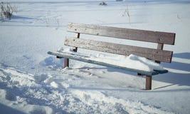 Brown-Bank im Schnee lizenzfreie stockfotos