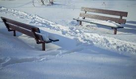 Brown-Bank im Schnee lizenzfreies stockfoto
