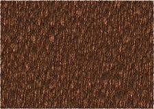 Brown Bark Texture Stock Photos