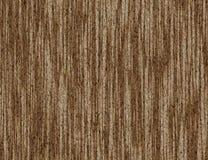 Brown bark texture Royalty Free Stock Photo
